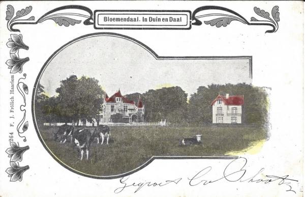 Lage Duin en Daalscheweg, Villa Elshof, 1902 (2)