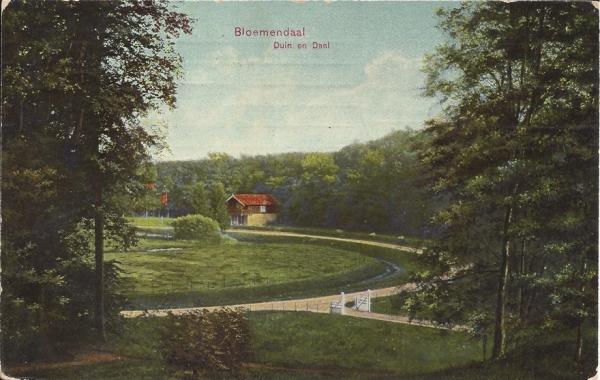 Lage Duin en Daalscheweg, Chalet, 1909