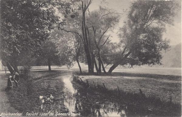Lage Duin en Daalscheweg, uitzicht vanaf Genestetbank, 1917