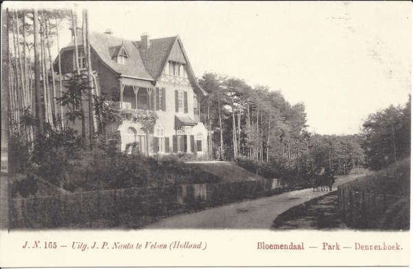 Parkweg, Villa Dennenhoek (3)