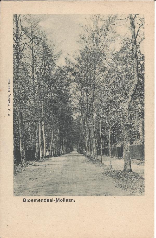 Mollaan, 1900