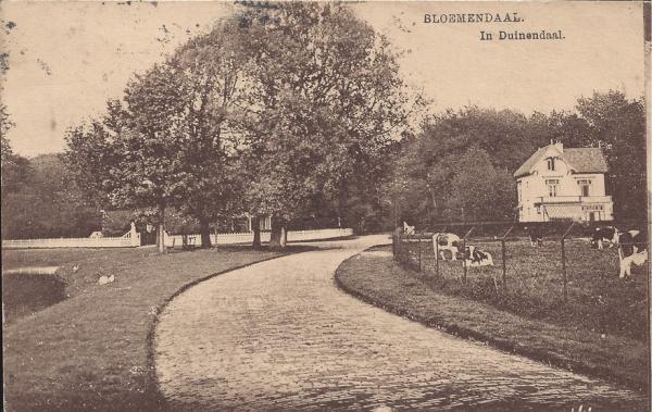 Lage Duin en Daalscheweg, halve Maantje, 1916