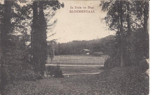 Lage Duin en Daalscheweg, Chalet, 1917