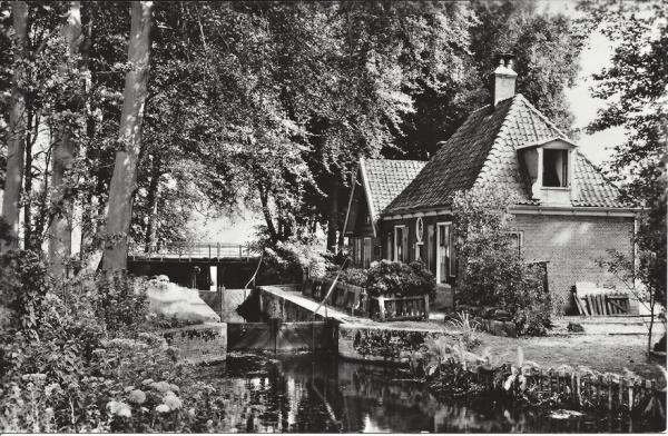 Elswoutslaan (4)
