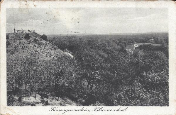 Hooge Duin en Daalscheweg, Koninginneduin 1920