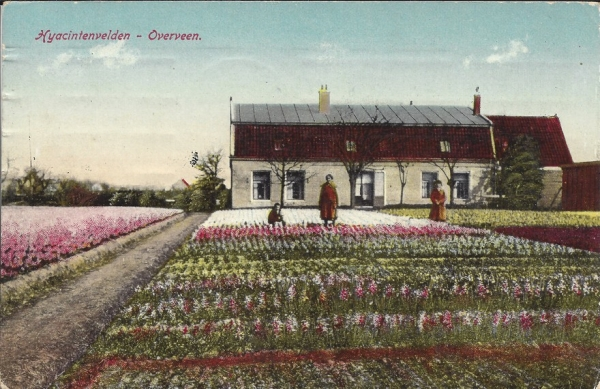 Houtvaart, 1924