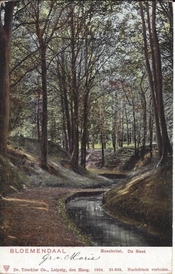 Midden Duin en Daalscheweg, Boschvliet, de Beek, 1905