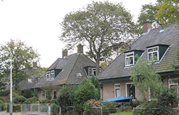 Brederodelaan 50-75,77, Van Ewijckweg 2-8 en Duinlustparkweg 3-23