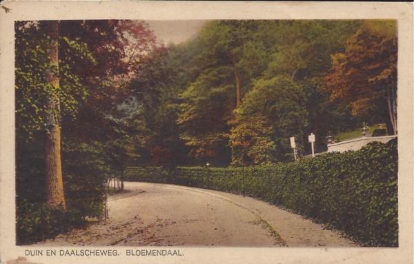 Midden Duin en Daalscheweg