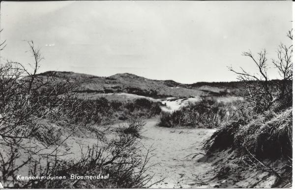 Zeeweg, Kennemerduinen, 1964