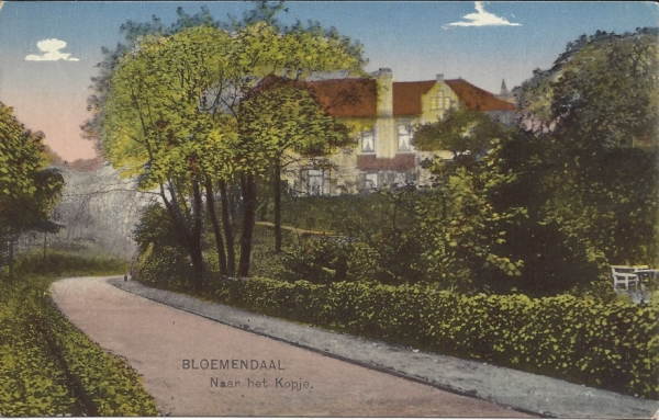 Hooge Duin en Daalscheweg, Huize Hoogh-heem (1)