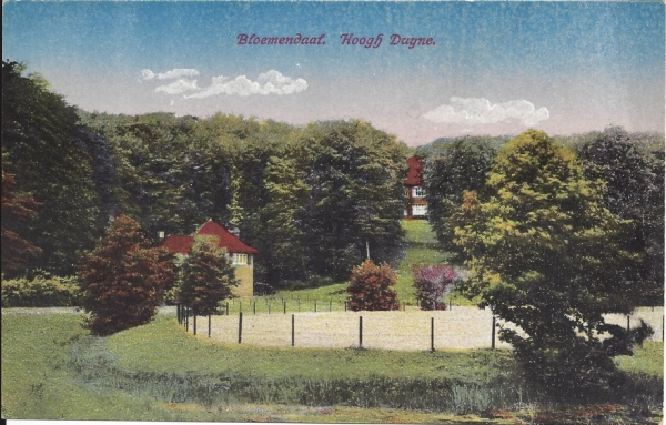 Midden Duin en Daalscheweg, Villa Hoogh Duijne