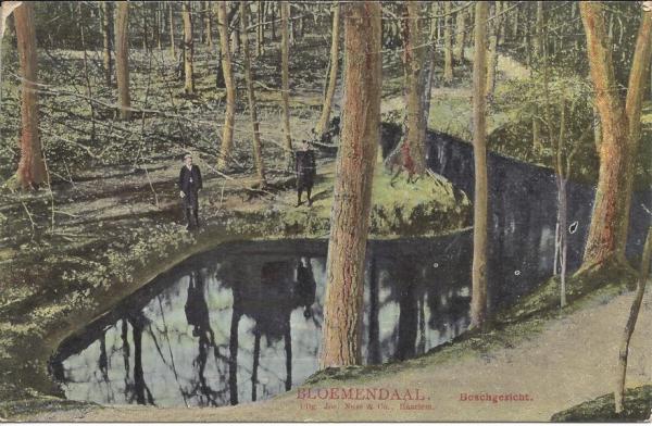 Midden Duin en Daalscheweg, de Beek, 1907